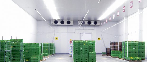 typical-cold-store-insulation-loading-area-cr-620x264